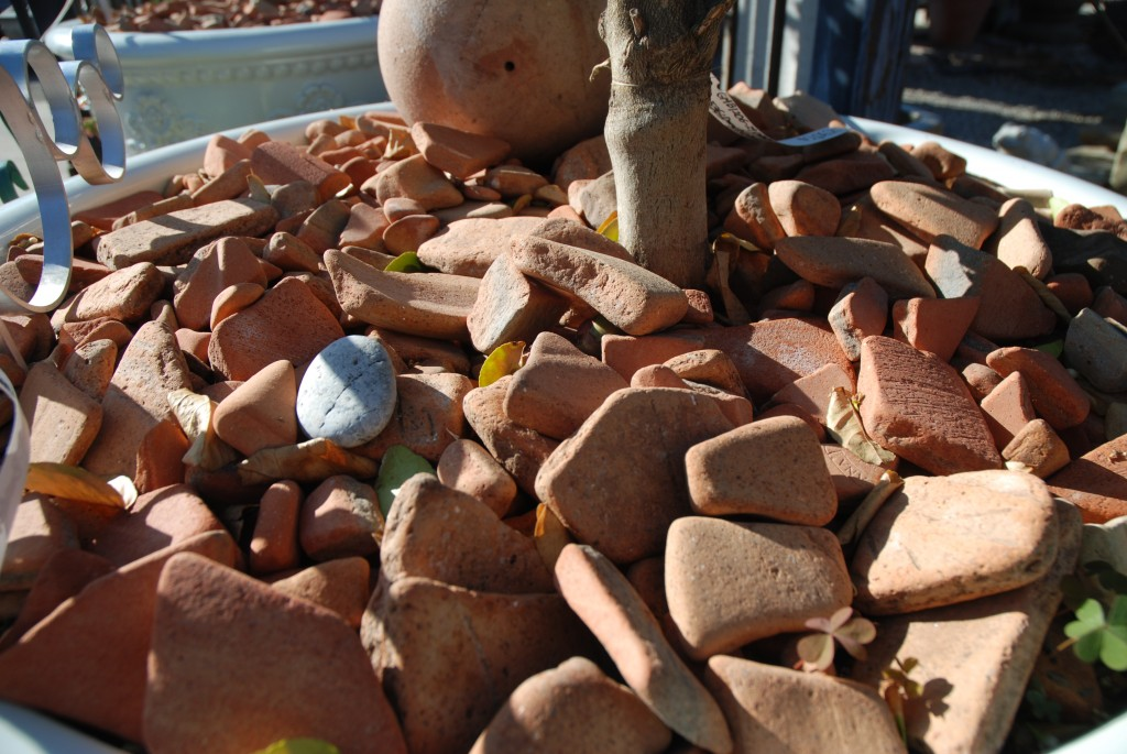 Eye of the Day|Clay Pot Shards| Clay, irrigation, water