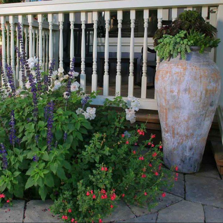 Lisa Cox Landscape Design