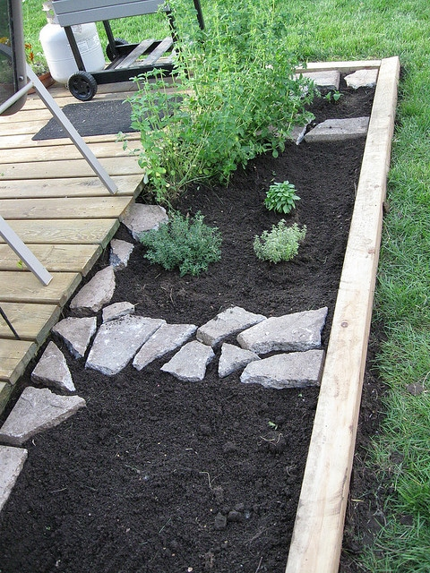 Eye Of The Day| Herb Garden With Pavers|garden