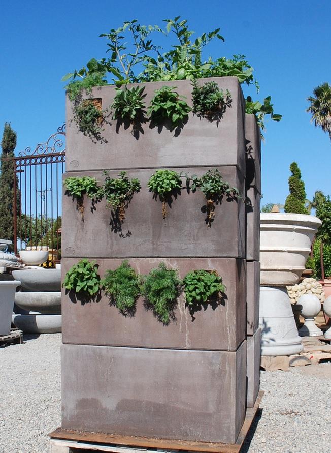 Eye of the Day Garden Design Center|Edible Container Garden| Oscar Carmona