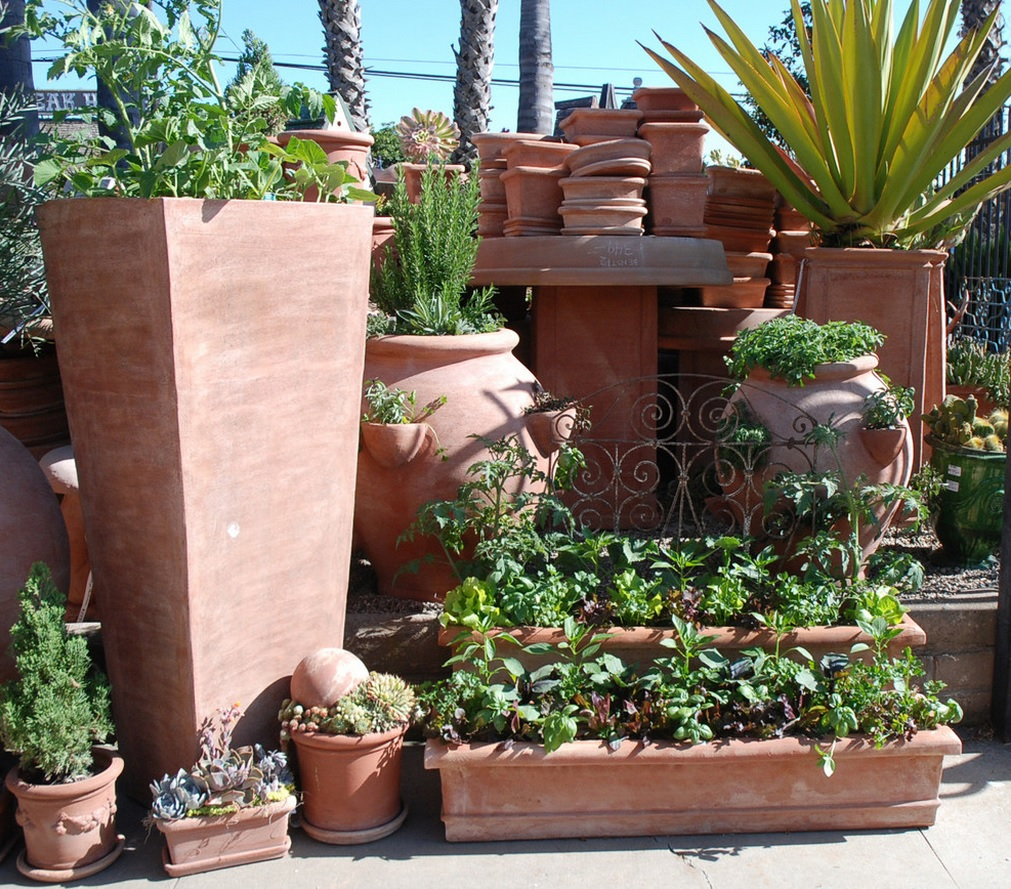 eye of the day garden design centeredible container garden oscar carmona