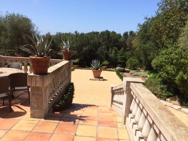 Eye of the Day|Blue Agave Landscape| Garden Design